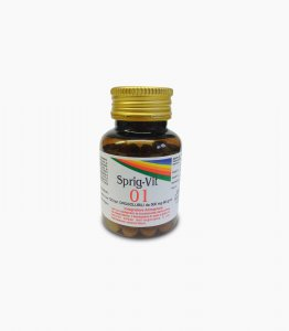 SPRIG-VIT 01 - 120 compresse orosolubili da 500 mg cad.